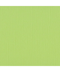 Florence Cardstock Texture Celery