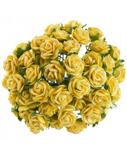 Open Roses Mullberry Yellow